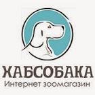 bizkom фотография